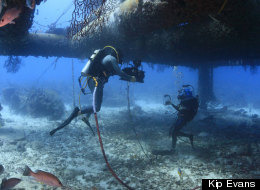 Filming at the Aquarius Reef Base with IMAX cameras to raise awareness of ocean research and conservation.