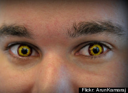 Novelty contact lenses are a trend each Halloween season. And they are potentially dangerous, according to Illinois regulators.