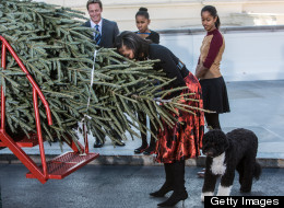 First lady Michelle Obama leans down to smell the official White House Christmas Tree after it was delivered to the White House, as her daughters Malia Obama (R) and Sasha Obama look on