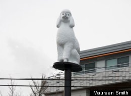 The Main Street poodle is a Vancouver public art installation that's brought mixed reaction. (Maureen Smith/City of Vancouver)